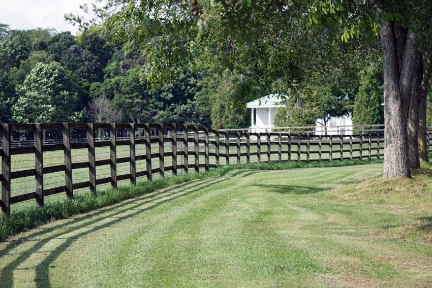 しっかり整備された環境です。日高で一番きれいな牧場とのうわさも・・