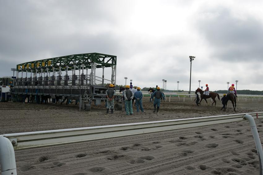 門別競馬場 輪乗りも距離が近くて迫力があります。