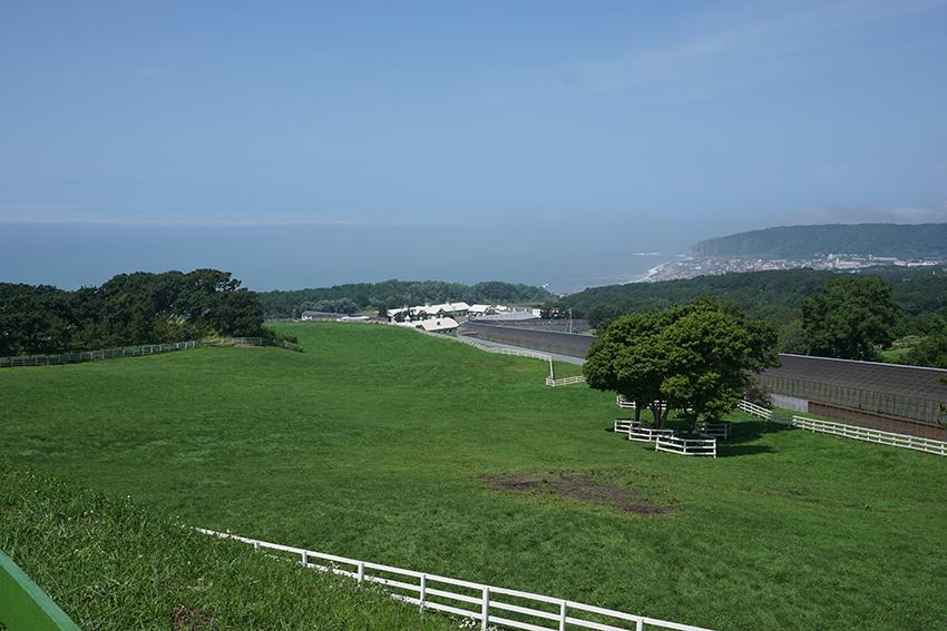 北海道 日高の絶景(コスモヴューファーム)