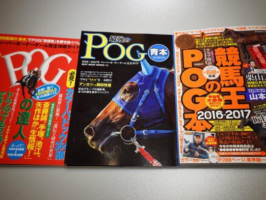 2016-2017 POG ラフィアン・ウイン・ノルマンディの注目馬 NO.2