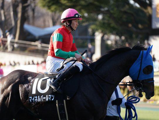 2017-2018 POG ラフィアン・ウイン・ノルマンディの注目馬 NO.2